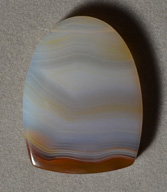 Piranha agate shield shaped pendant bead