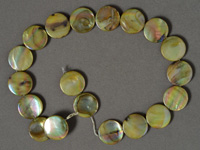 Large mother of pearl coin beads.