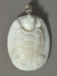 Buffalo bone turtle