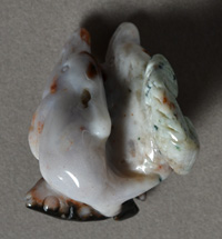 Agate dolphins