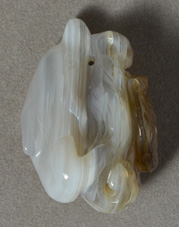 Agate dolphin